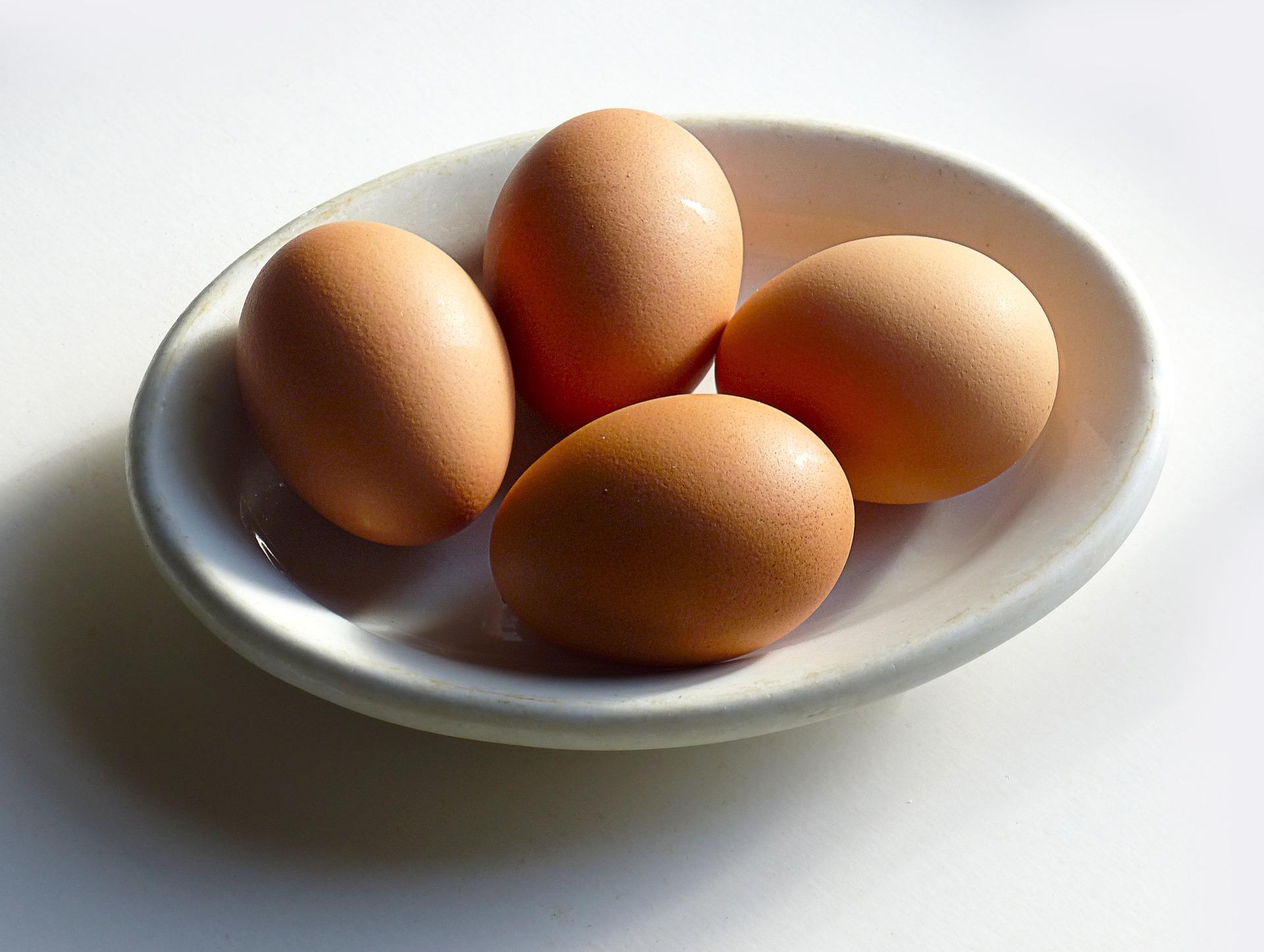 egg-1721440_1920