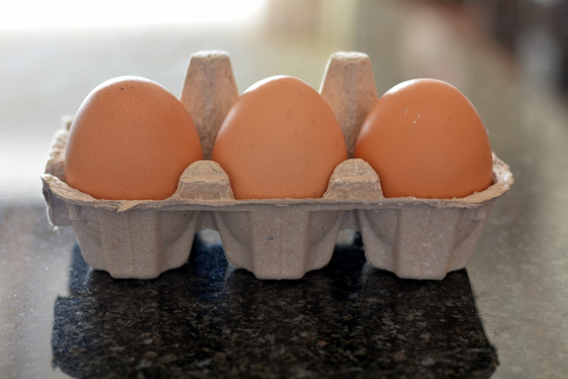 egg-container-1709039_1920