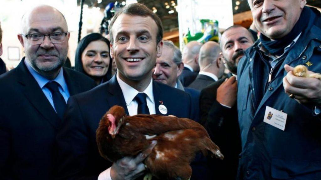 Au salon de l 39 agriculture emmanuel macron a adopt une for Macron salon agriculture oeuf